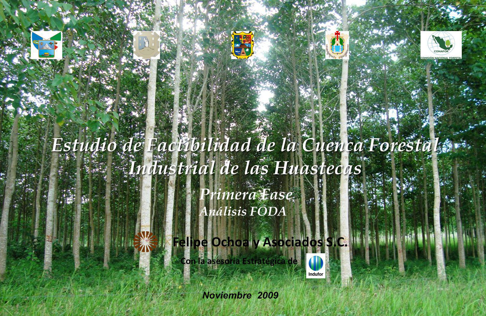 Estudio de Factibilidad de la Cuenca Forestal Industrial de las Huastecas Felipe Ochoa y Asociados S.C. Con la asesoría Estratégica de Noviembre 2009
