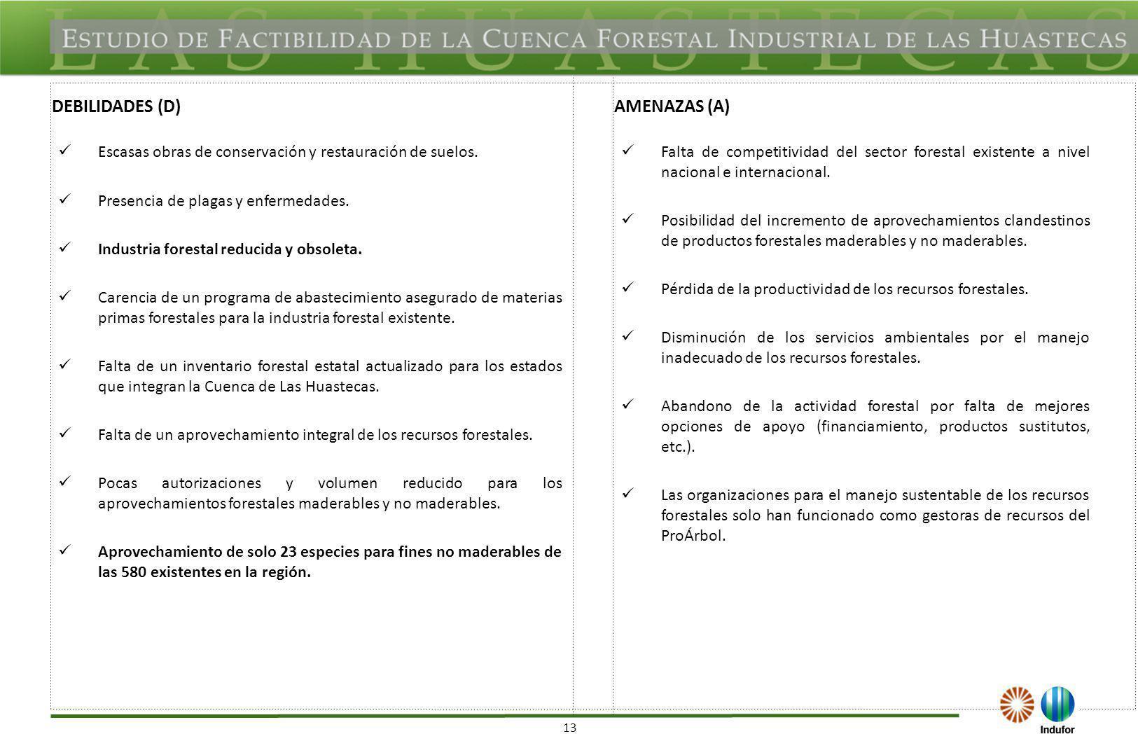 13 DEBILIDADES (D)AMENAZAS (A) Escasas obras de conservación y restauración de suelos. Presencia de plagas y enfermedades. Industria forestal reducida