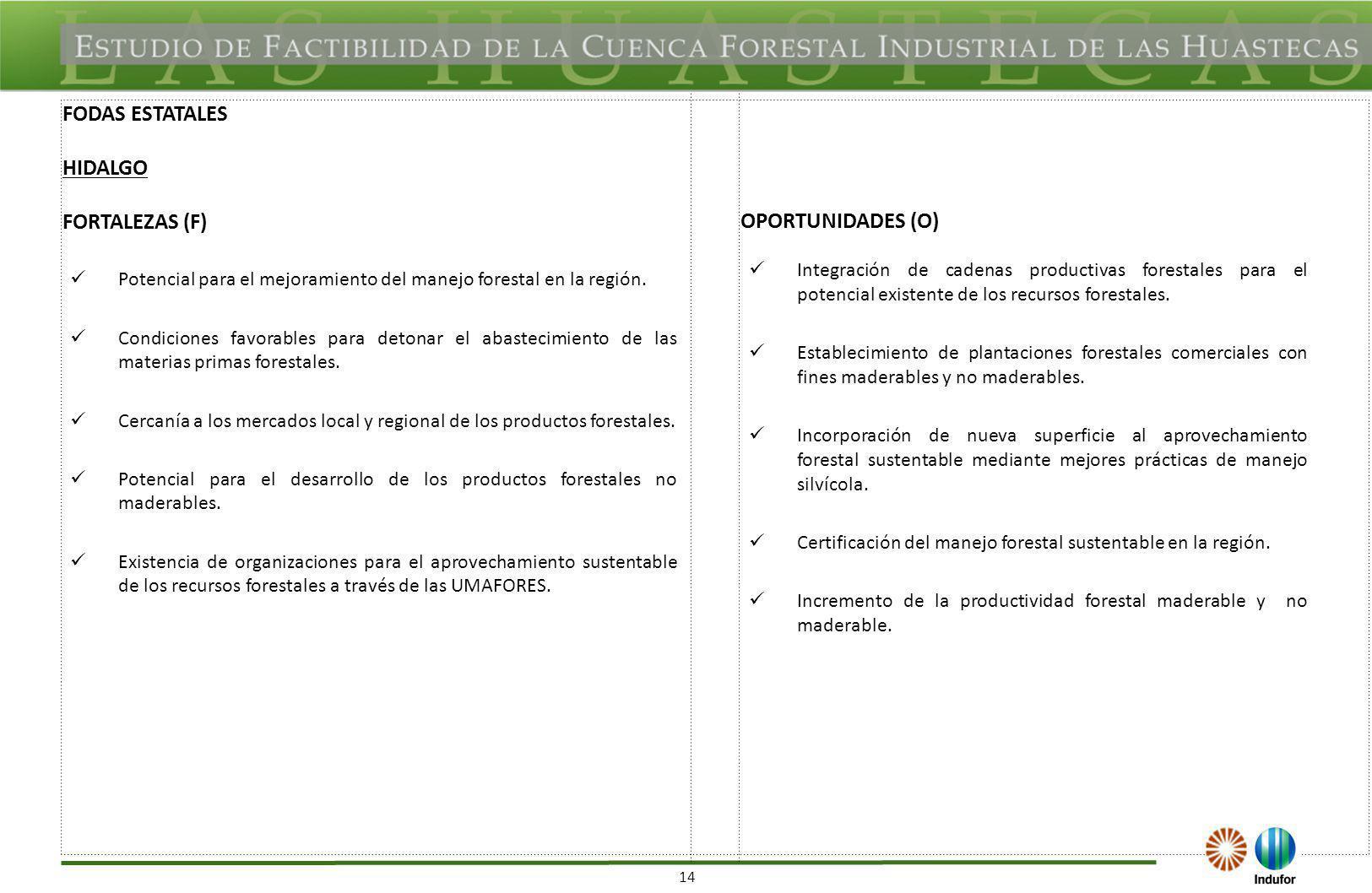14 FODAS ESTATALES HIDALGO FORTALEZAS (F) OPORTUNIDADES (O) Potencial para el mejoramiento del manejo forestal en la región. Condiciones favorables pa