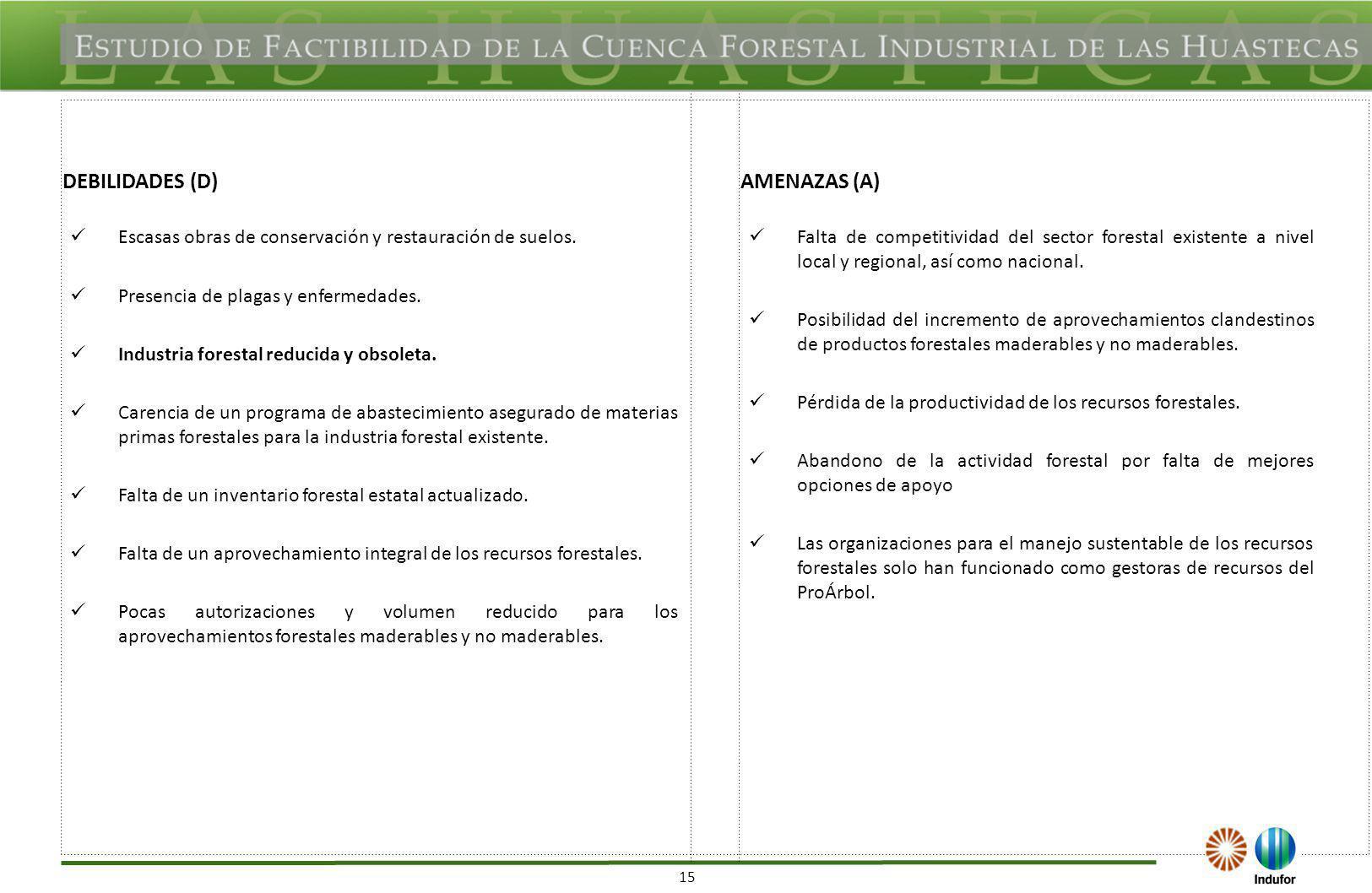 15 DEBILIDADES (D)AMENAZAS (A) Escasas obras de conservación y restauración de suelos. Presencia de plagas y enfermedades. Industria forestal reducida