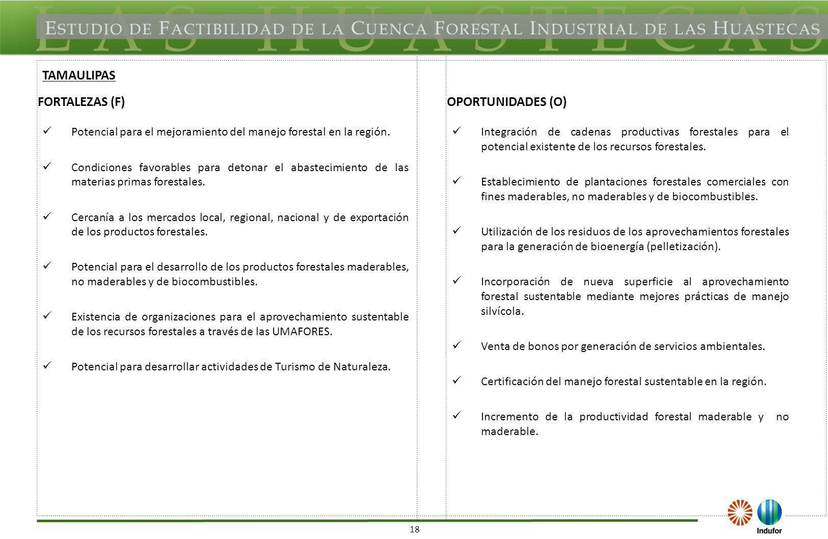 18 FORTALEZAS (F)OPORTUNIDADES (O) Potencial para el mejoramiento del manejo forestal en la región. Condiciones favorables para detonar el abastecimie