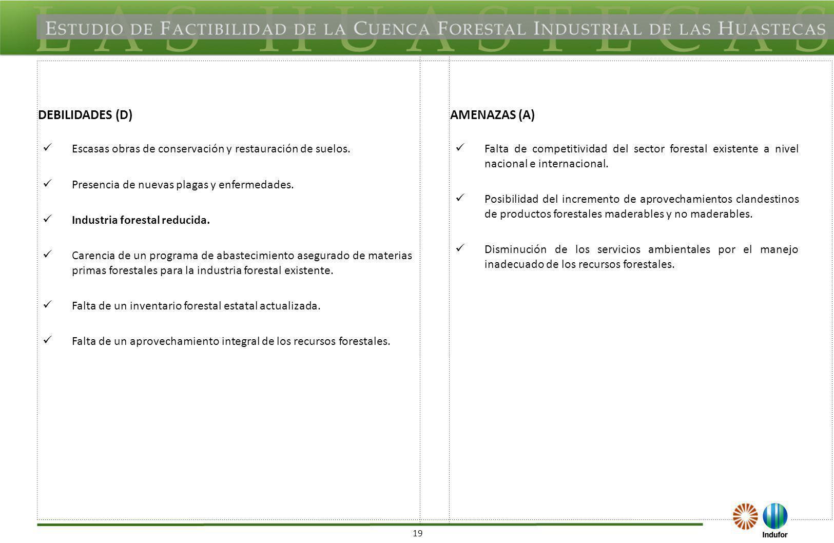 19 DEBILIDADES (D)AMENAZAS (A) Escasas obras de conservación y restauración de suelos. Presencia de nuevas plagas y enfermedades. Industria forestal r