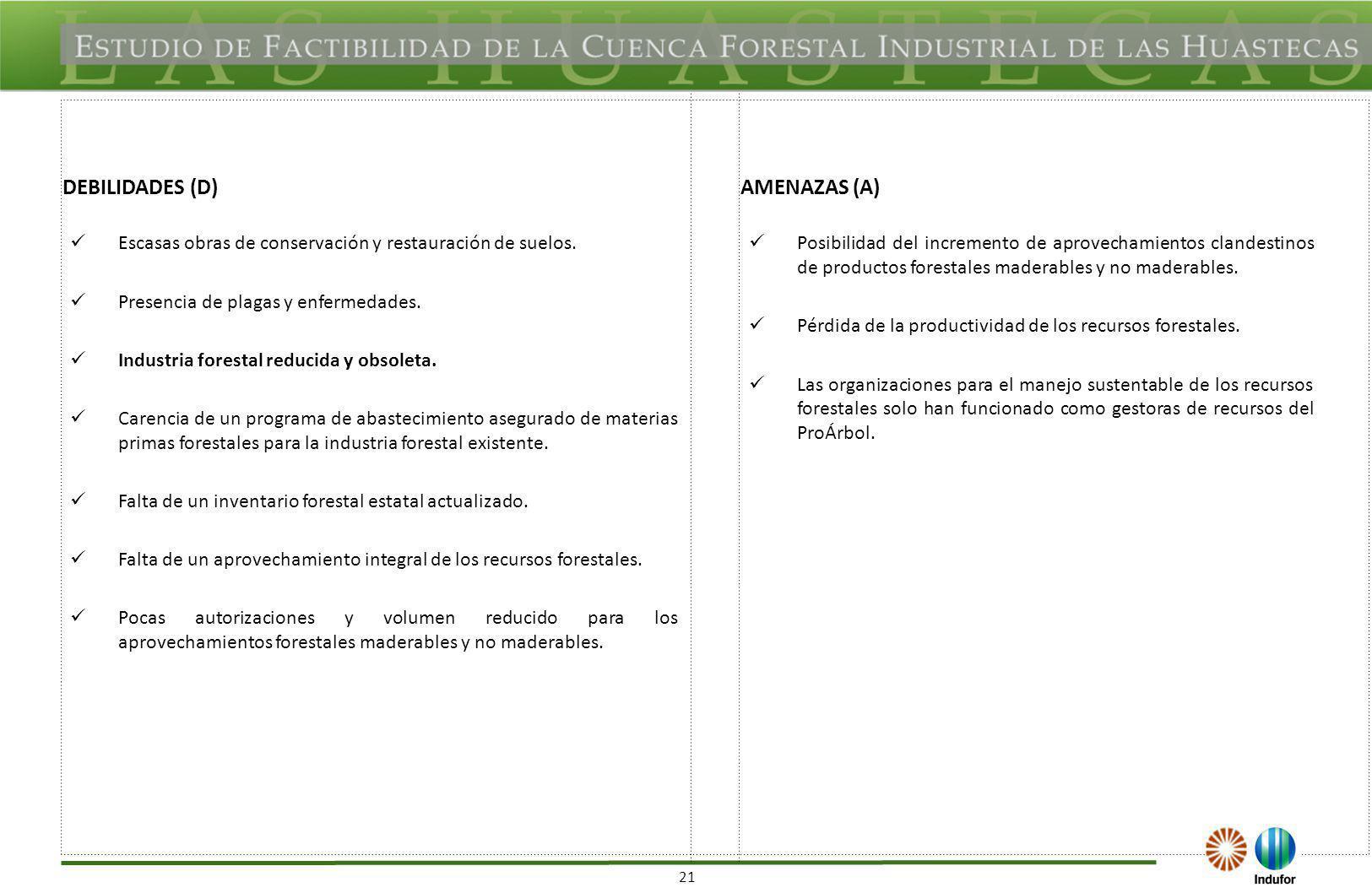 21 DEBILIDADES (D)AMENAZAS (A) Escasas obras de conservación y restauración de suelos. Presencia de plagas y enfermedades. Industria forestal reducida