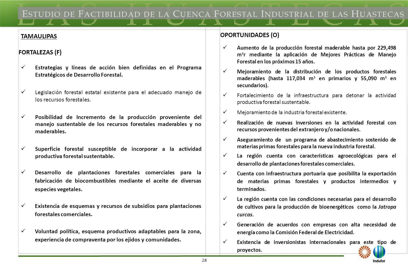 28 FORTALEZAS (F) OPORTUNIDADES (O) Estrategias y líneas de acción bien definidas en el Programa Estratégicos de Desarrollo Forestal. Legislación fore