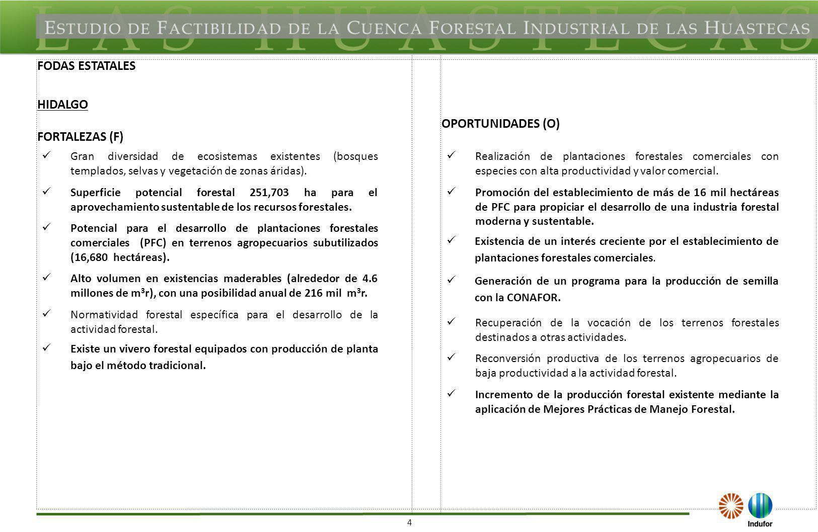 5 DEBILIDADES (D)AMENAZAS (A) Alta fragmentación en la tenencia de la tierra para el desarrollo de la actividad forestal.