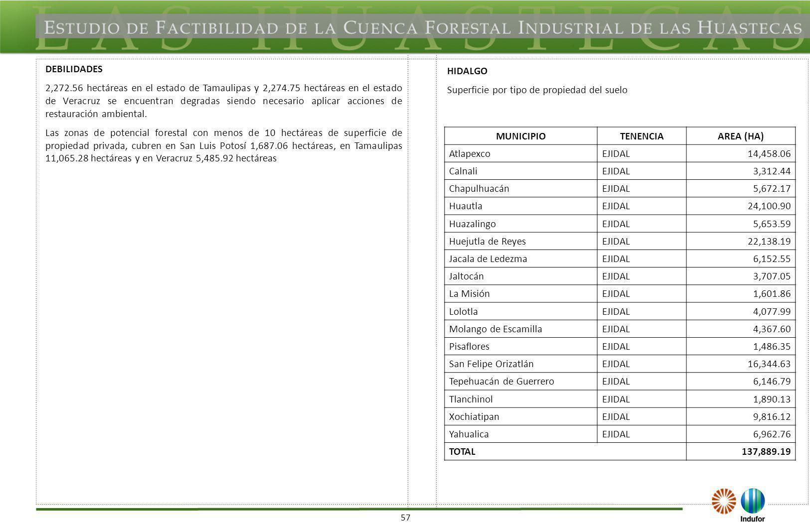 57 DEBILIDADES 2,272.56 hectáreas en el estado de Tamaulipas y 2,274.75 hectáreas en el estado de Veracruz se encuentran degradas siendo necesario apl