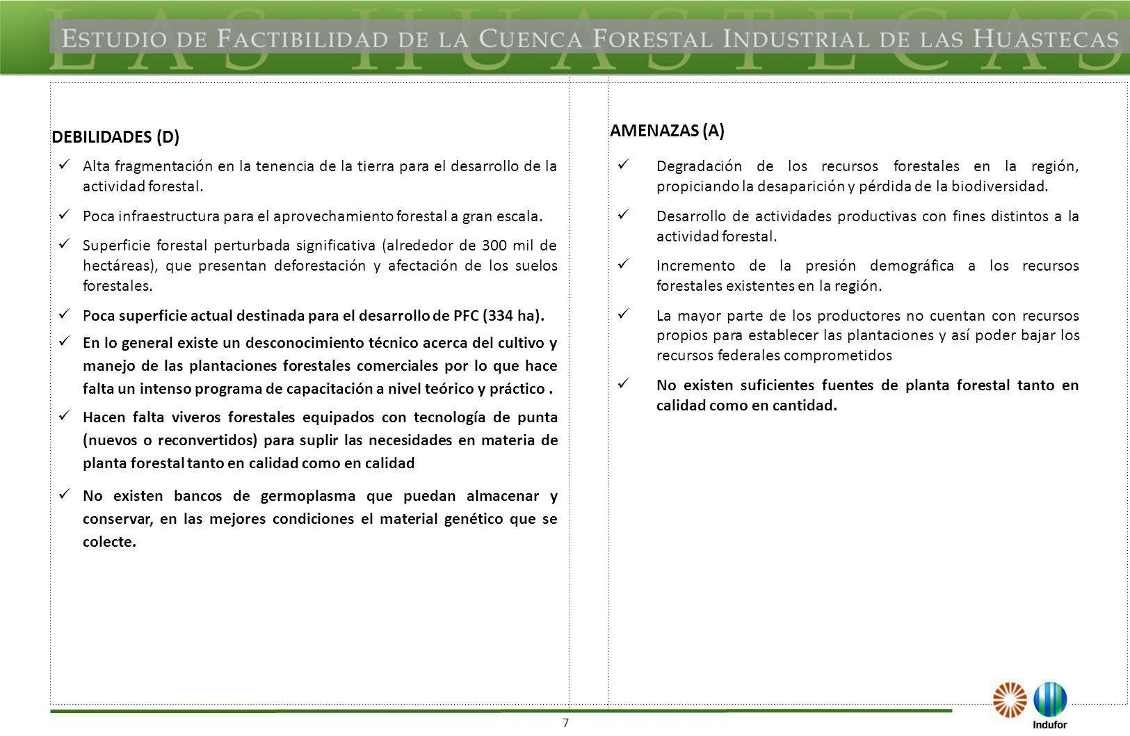 7 DEBILIDADES (D) AMENAZAS (A) Alta fragmentación en la tenencia de la tierra para el desarrollo de la actividad forestal. Poca infraestructura para e