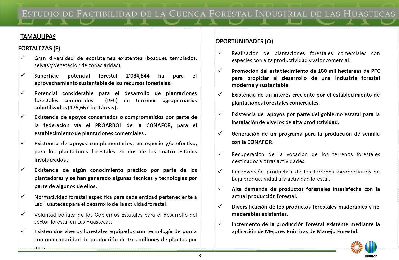 49 SAN LUIS POTOSÍ Fortalezas Presencia de proyectos de PFC con superficies considerables más paquetes tecnológicos probados para especies de alto valor posibilitan la proliferación de proyectos forestales – industriales.