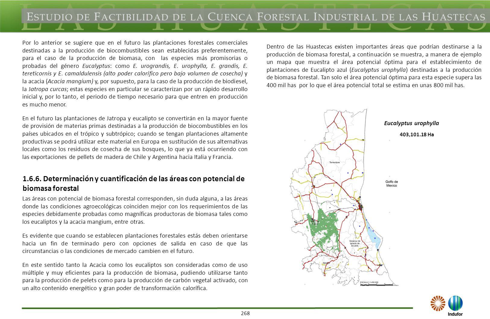 268 Por lo anterior se sugiere que en el futuro las plantaciones forestales comerciales destinadas a la producción de biocombustibles sean establecida