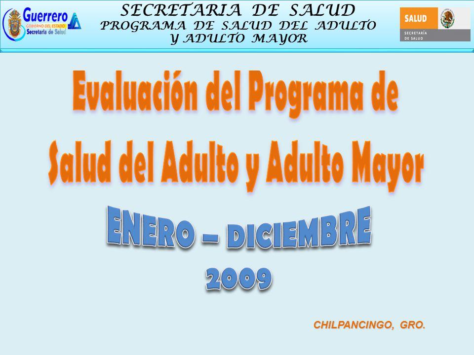 SECRETARIA DE SALUD PROGRAMA DE SALUD DEL ADULTO Y ADULTO MAYOR SECRETARIA DE SALUD PROGRAMA DE SALUD DEL ADULTO Y ADULTO MAYOR ENERO – DICIEMBRE 2009 CHILPANCINGO, GRO.