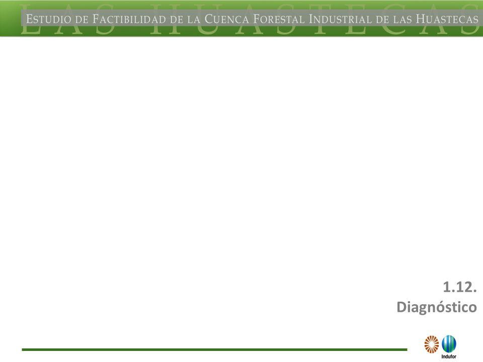 413 Diagnóstico de los aspectos de Medio Ambiente y socioeconómicos (cap. I y II)