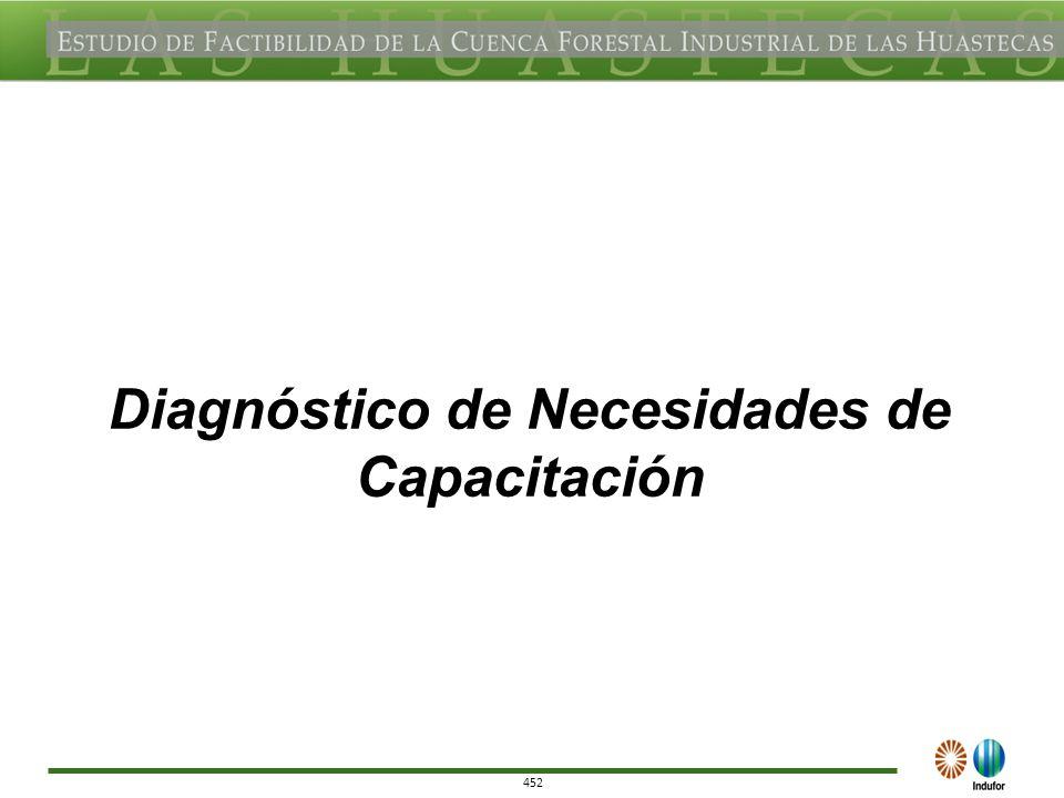 452 Diagnóstico de Necesidades de Capacitación