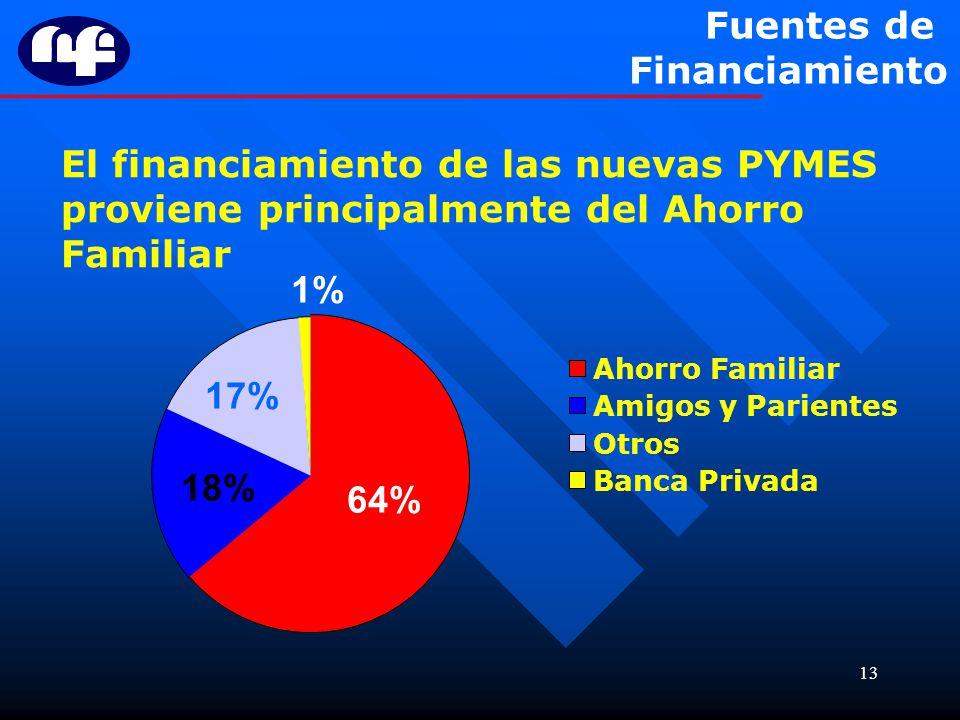 13 64% El financiamiento de las nuevas PYMES proviene principalmente del Ahorro Familiar 17% 18% Ahorro Familiar Amigos y Parientes Otros Banca Privad