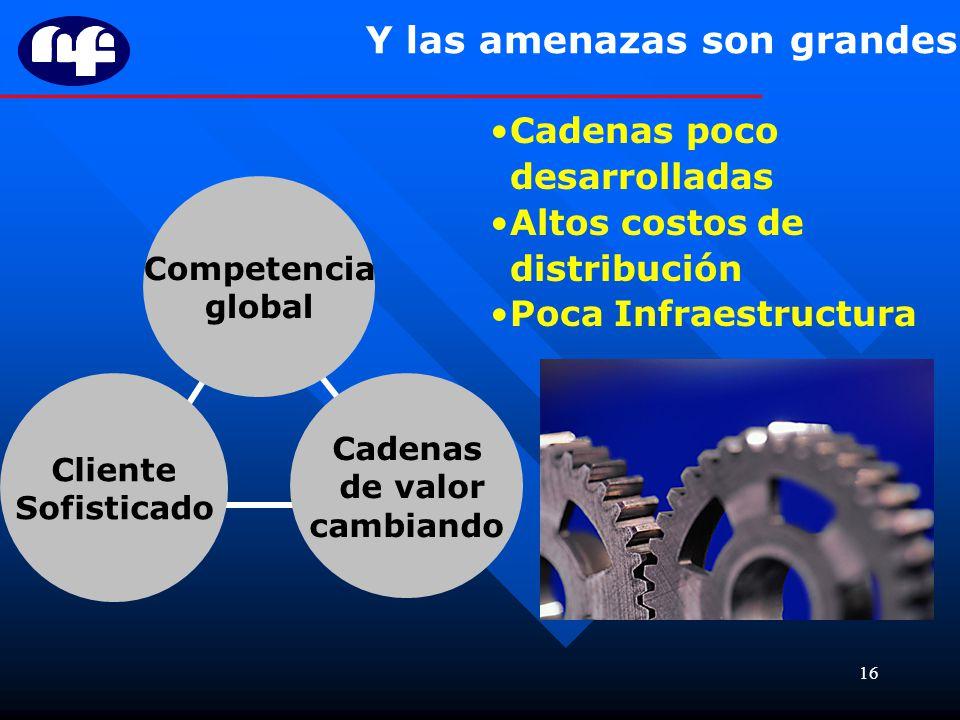 16 Y las amenazas son grandes Cliente Sofisticado Cadenas de valor cambiando Competencia global Cadenas poco desarrolladas Altos costos de distribució