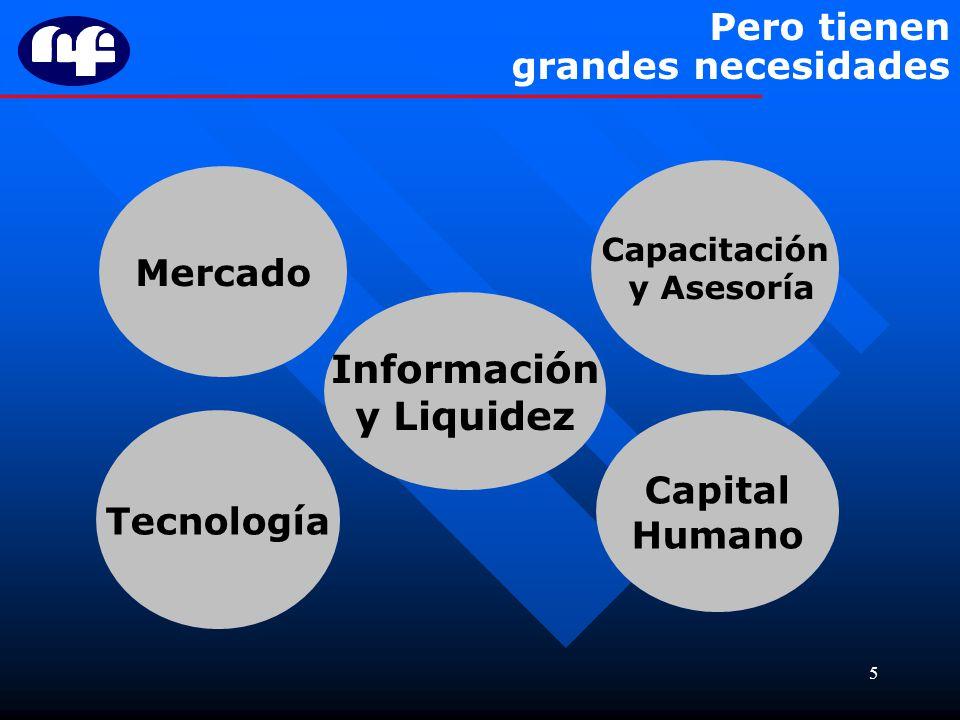 5 Pero tienen grandes necesidades Información y Liquidez Mercado Tecnología Capacitación y Asesoría Capital Humano