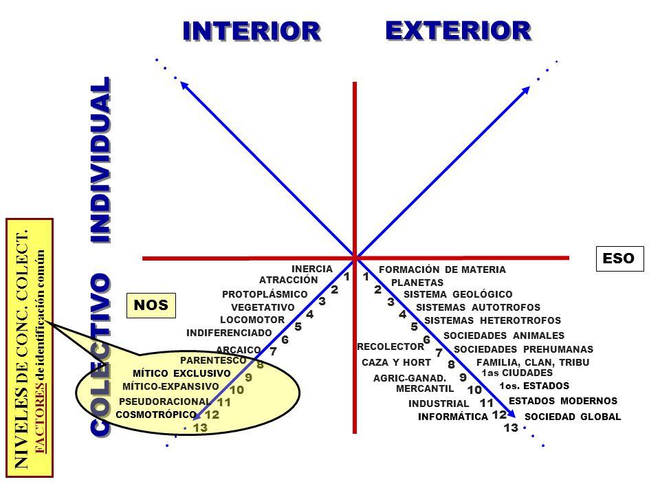 INTERIOR EXTERIOR COLECTIVO INDIVIDUAL ESO 7 3 11 9 13 2 6 8 10 12 4 1 6 13 7 9 11 3 5 1 12 8 5 4 2 10 LOCOMOTOR PROTOPLÁSMICO FAMILIA, CLAN, TRIBU SOCIEDADES ANIMALES 1os.
