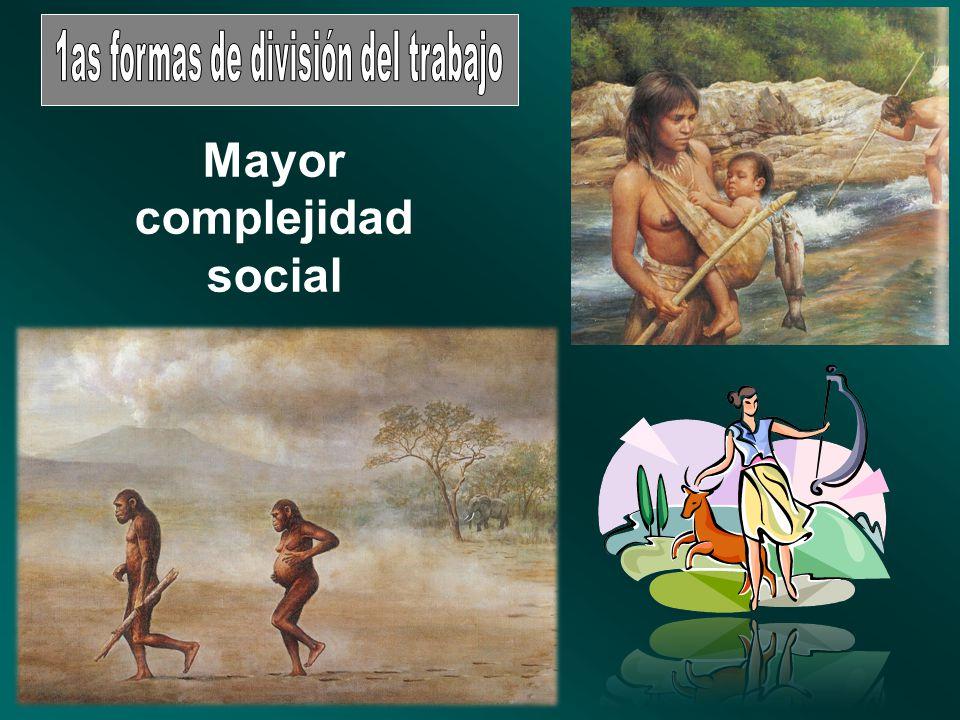 Mayor complejidad social