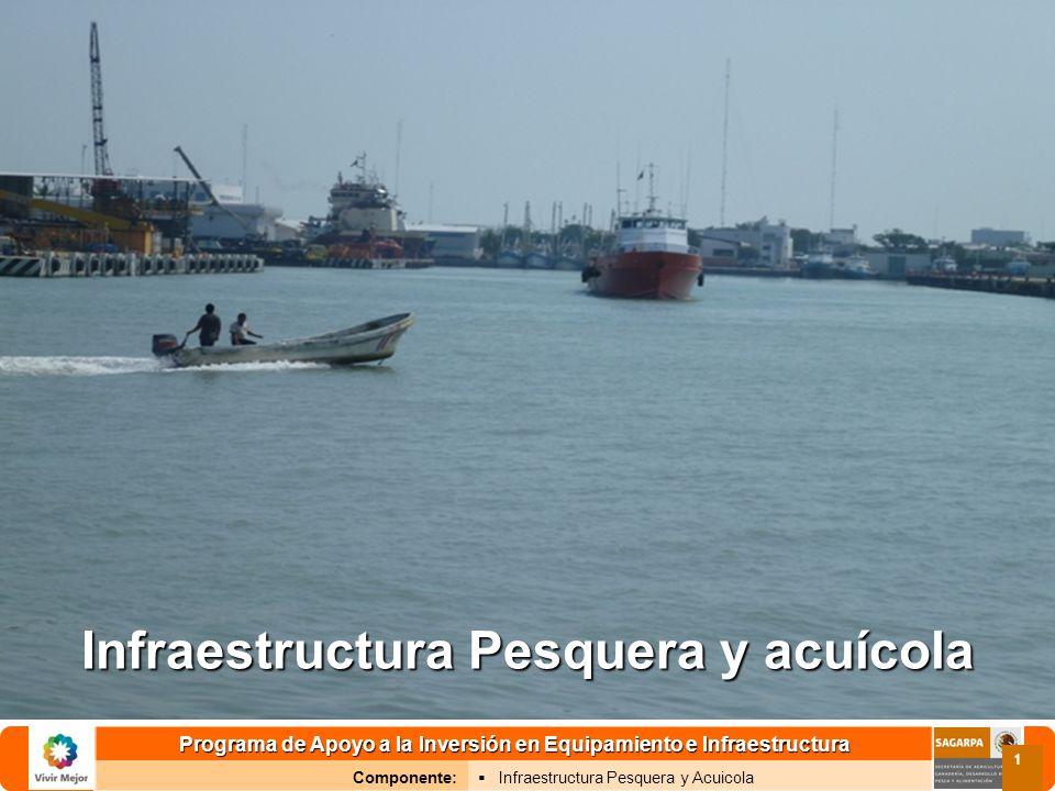 Programa de Apoyo a la Inversión en Equipamiento e Infraestructura Componente: Infraestructura Pesquera y Acuicola 2 Objetivo específico Generar las obras de infraestructura pesquera y acuícola que contribuyan a incrementar la capitalización de las unidades económicas; y coadyuven a mejorar el manejo sustentable de la producción pesquera, el acopio y su conservación, garantizar la seguridad en las maniobras de atraque y desembarque, así como la rehabilitación de las áreas de pesca, y la instalación de arrecifes artificiales.