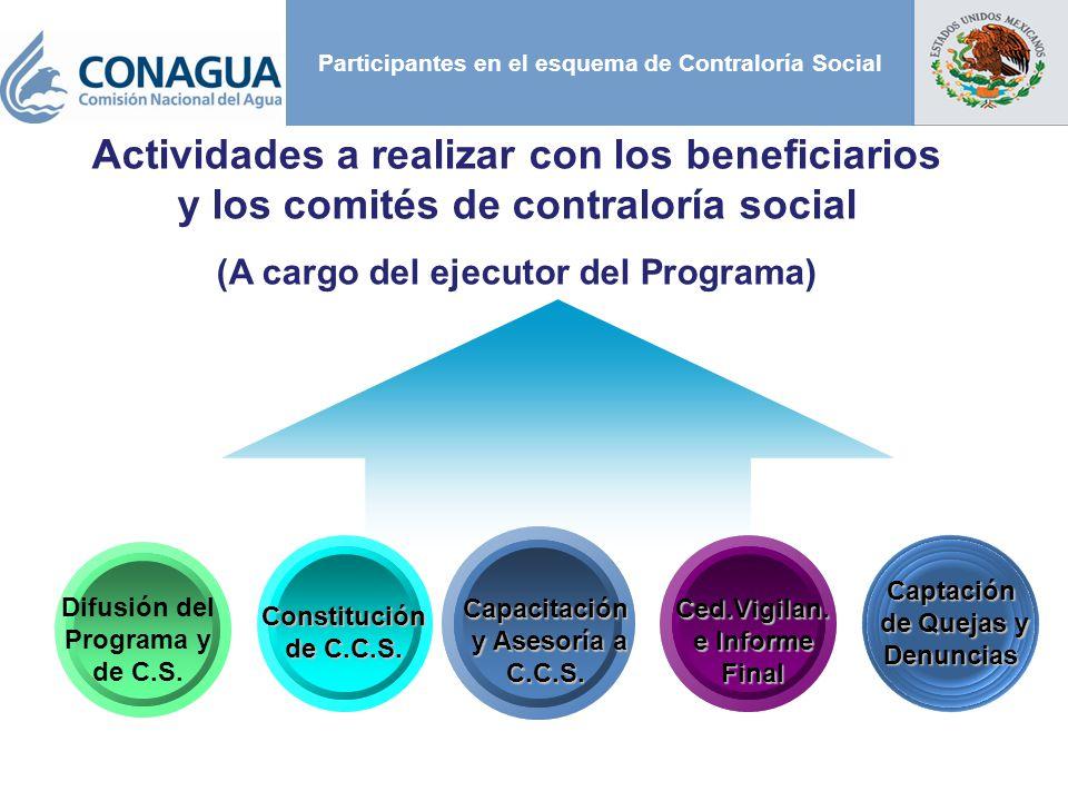 Participantes en el esquema de Contraloría Social Constitución de C.C.S. Difusión del Programa y de C.S. Capacitación y Asesoría a C.C.S. y Asesoría a