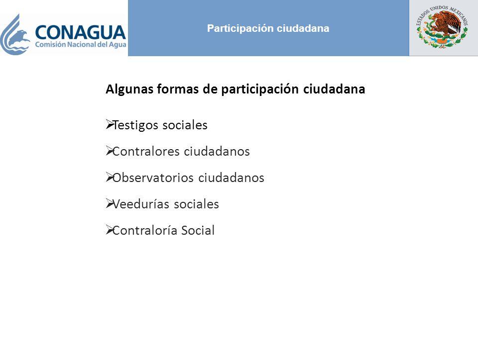 Participación ciudadana Algunas formas de participación ciudadana Testigos sociales Contralores ciudadanos Observatorios ciudadanos Veedurías sociales Contraloría Social