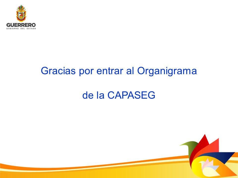 Gracias por entrar al Organigrama de la CAPASEG