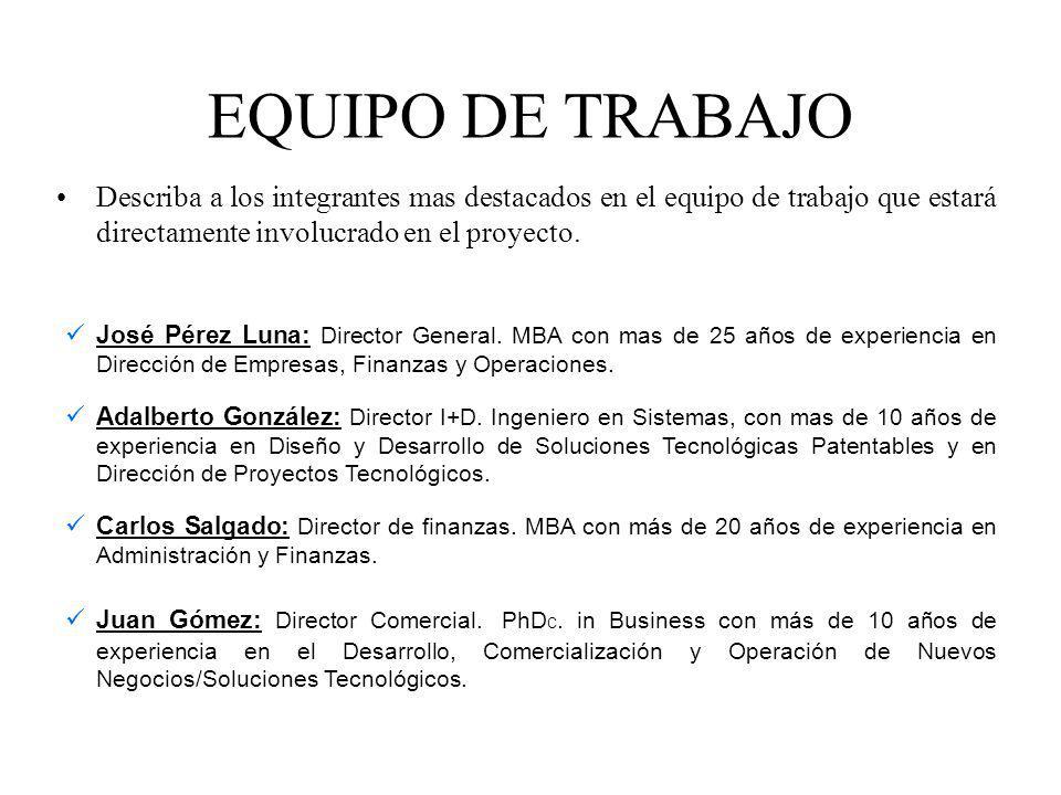 EQUIPO DE TRABAJO Describa a los integrantes mas destacados en el equipo de trabajo que estará directamente involucrado en el proyecto. José Pérez Lun