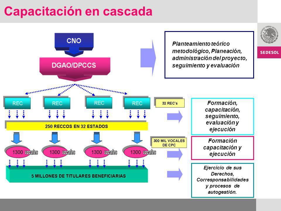 Capacitación en cascada Planteamiento teórico metodológico, Planeación, administración del proyecto, seguimiento y evaluación Formación, capacitación,
