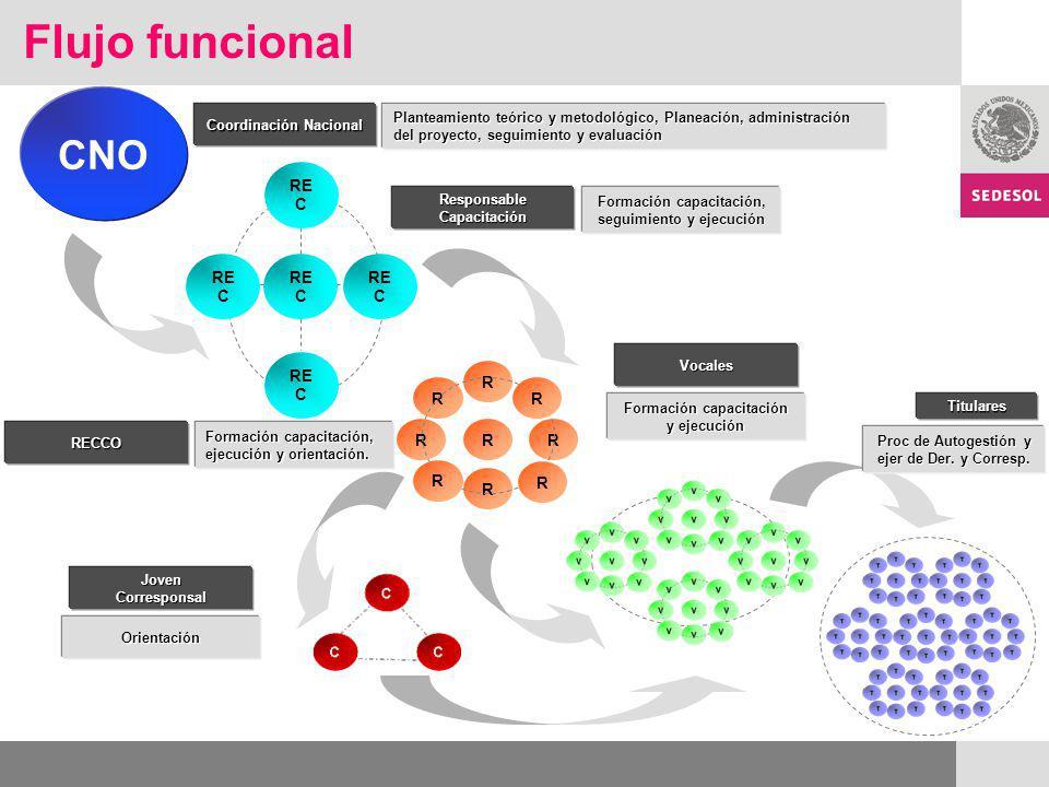 Flujo funcional CNO Planteamiento teórico y metodológico, Planeación, administración del proyecto, seguimiento y evaluación R RR R R R R R R RE C Coordinación Nacional Formación capacitación, seguimiento y ejecución ResponsableCapacitación Formación capacitación, ejecución y orientación.
