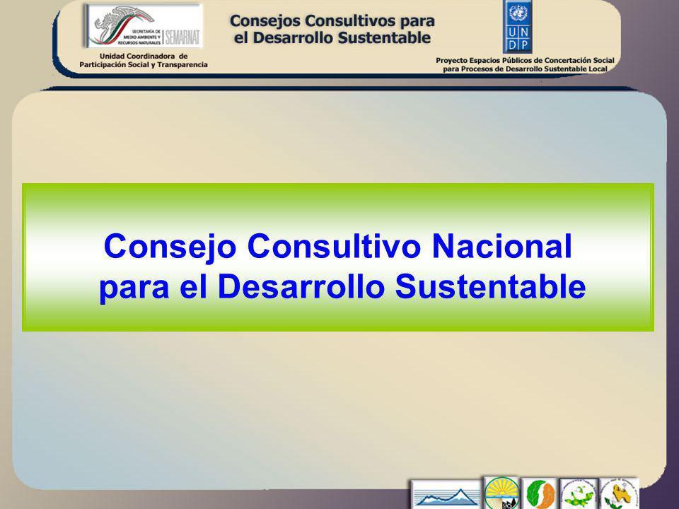 Consejo Consultivo Nacional para el Desarrollo Sustentable