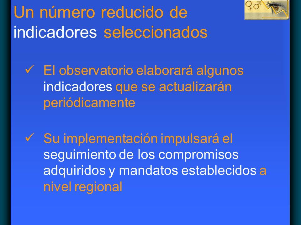 Un número reducido de indicadores seleccionados El observatorio elaborará algunos indicadores que se actualizarán periódicamente Su implementación imp