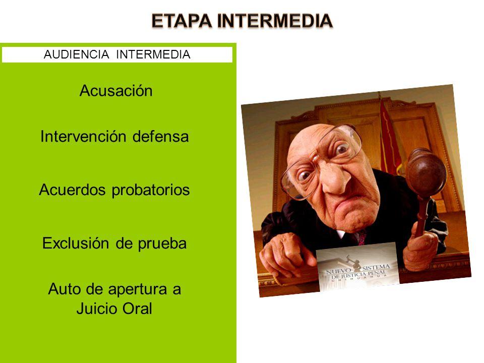 Acusación Intervención defensa Acuerdos probatorios Exclusión de prueba Auto de apertura a Juicio Oral AUDIENCIA INTERMEDIA