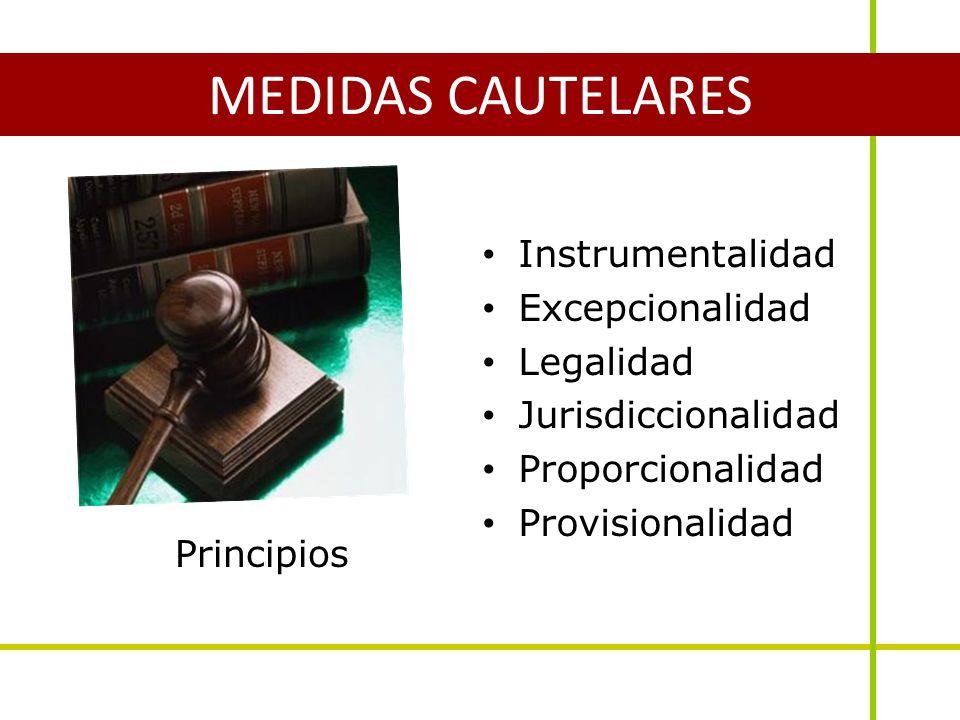 Principios Instrumentalidad Excepcionalidad Legalidad Jurisdiccionalidad Proporcionalidad Provisionalidad MEDIDAS CAUTELARES