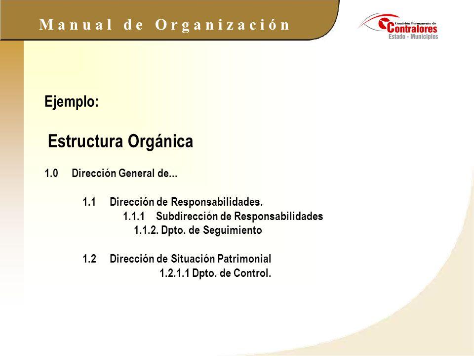 M a n u a l d e O r g a n i z a c i ó n Ejemplo: Estructura Orgánica 1.0 Dirección General de... 1.1 Dirección de Responsabilidades. 1.1.1 Subdirecció