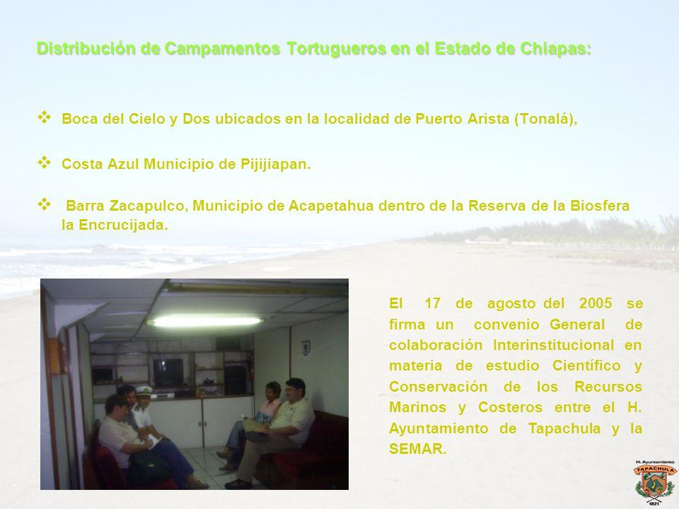 Distribución de Campamentos Tortugueros en el Estado de Chiapas: Boca del Cielo y Dos ubicados en la localidad de Puerto Arista (Tonalá), Costa Azul M