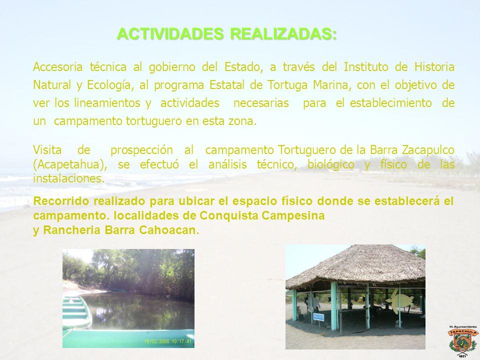 Accesoria técnica al gobierno del Estado, a través del Instituto de Historia Natural y Ecología, al programa Estatal de Tortuga Marina, con el objetiv