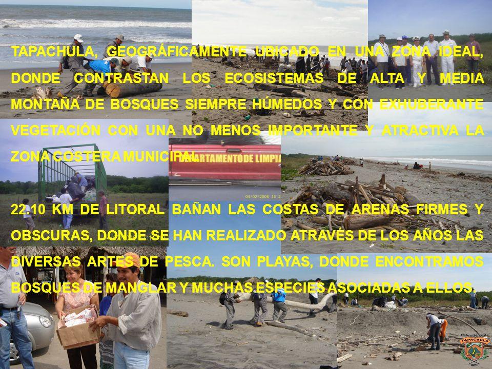 TAPACHULA, GEOGRÁFICAMENTE UBICADO EN UNA ZONA IDEAL, DONDE CONTRASTAN LOS ECOSISTEMAS DE ALTA Y MEDIA MONTAÑA DE BOSQUES SIEMPRE HÚMEDOS Y CON EXHUBE