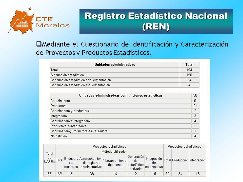 Página Web (www.ctreig.morelos.gob.mx).