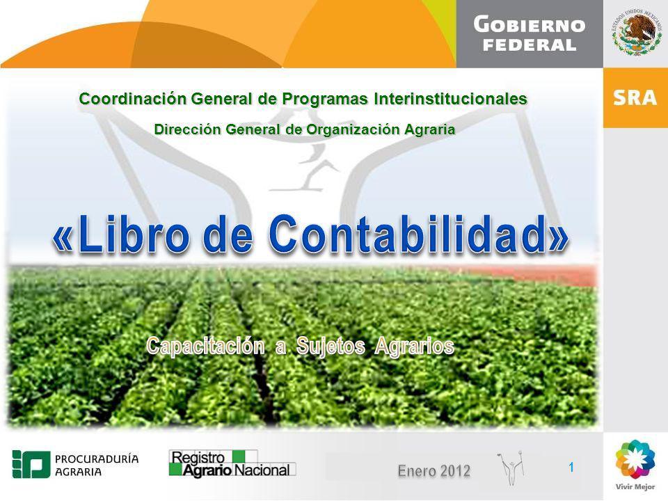 Diciembre, 2010 1 1 Coordinación General de Programas Interinstitucionales Dirección General de Organización Agraria