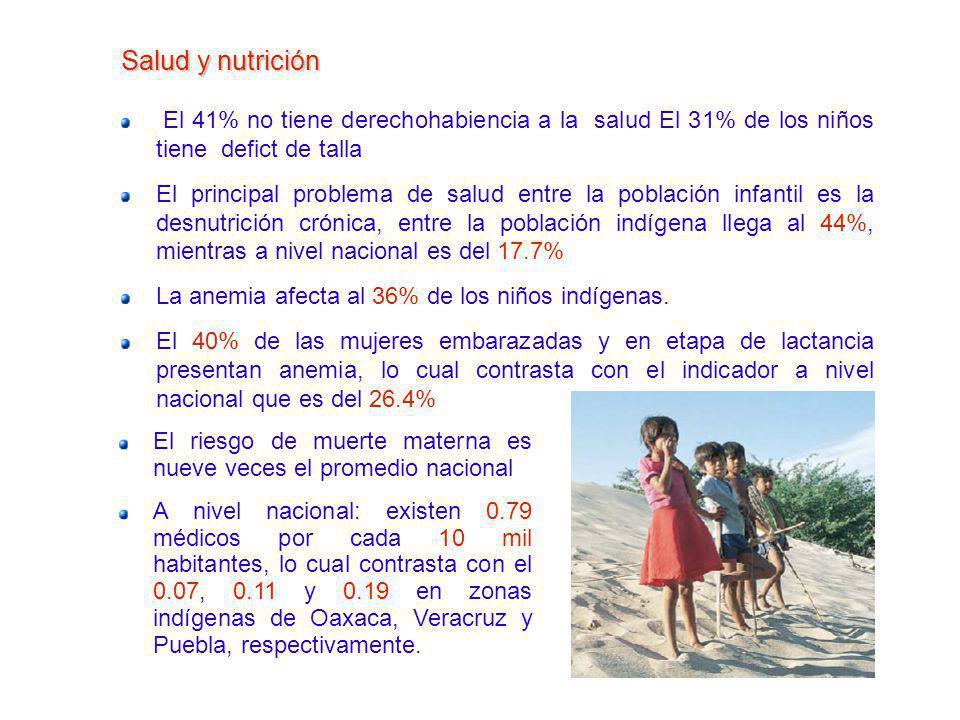 Salud y nutrición El 41% no tiene derechohabiencia a la salud El 31% de los niños tiene defict de talla El principal problema de salud entre la poblac
