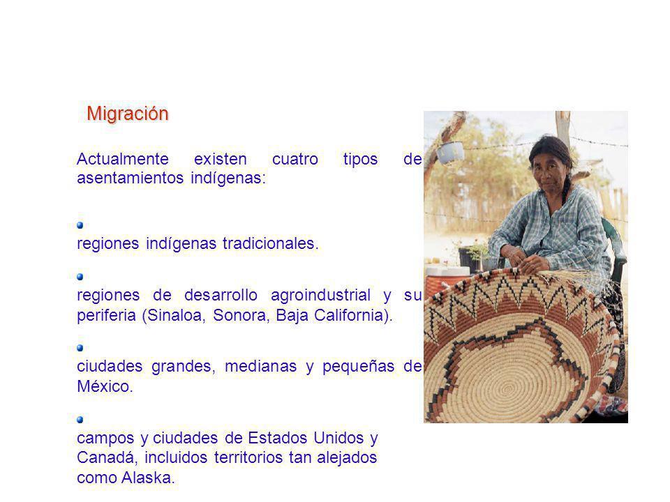 H Actualmente existen cuatro tipos de asentamientos indígenas: R regiones indígenas tradicionales. R regiones de desarrollo agroindustrial y su perife