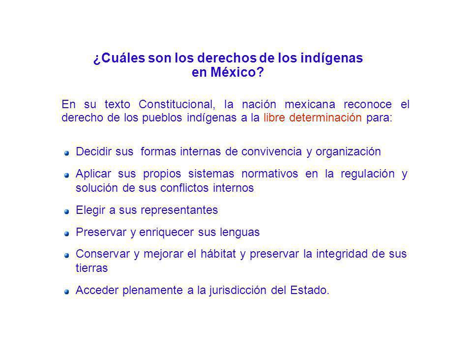 ¿Cuáles son los derechos de los indígenas en México? En su texto Constitucional, la nación mexicana reconoce el derecho de los pueblos indígenas a la