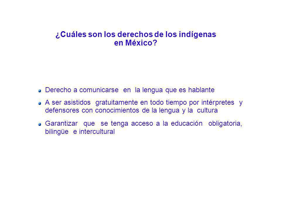 ¿Cuáles son los derechos de los indígenas en México? Derecho a comunicarse en la lengua que es hablante A ser asistidos gratuitamente en todo tiempo p