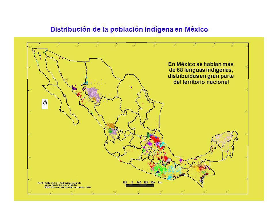 ¿Cuál es el patrimonio de los pueblos indígenas de México.