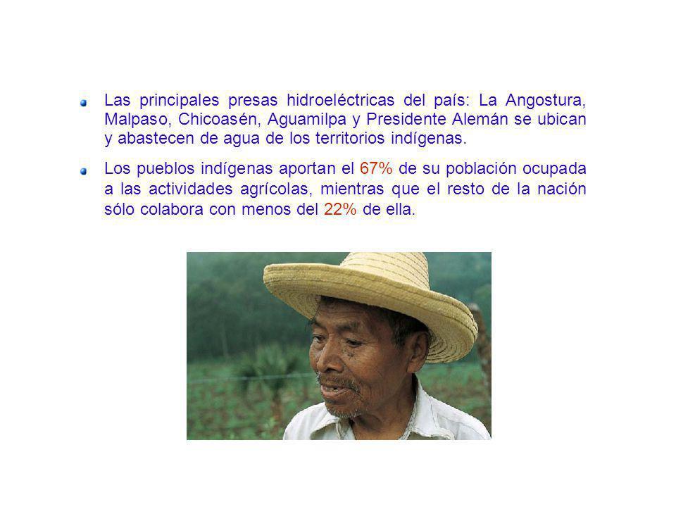 Las principales presas hidroeléctricas del país: La Angostura, Malpaso, Chicoasén, Aguamilpa y Presidente Alemán se ubican y abastecen de agua de los
