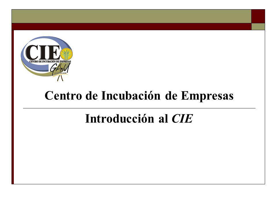 Elaboración de estudios y diagnóstico de la empresa.