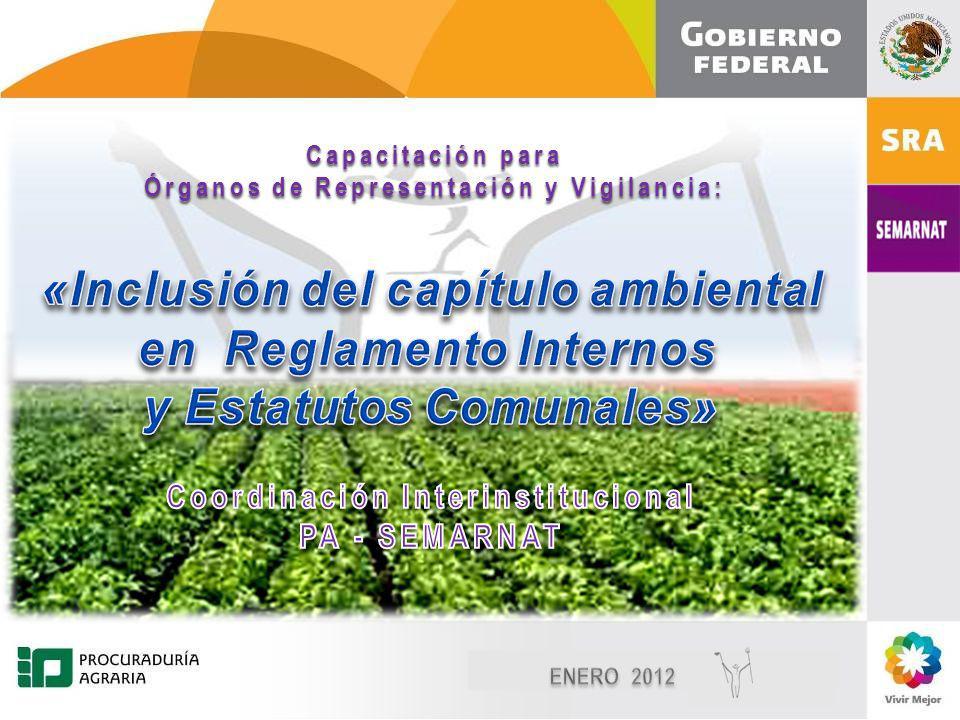 Diciembre, 2010 1 1 Capacitación para Órganos de Representación y Vigilancia: