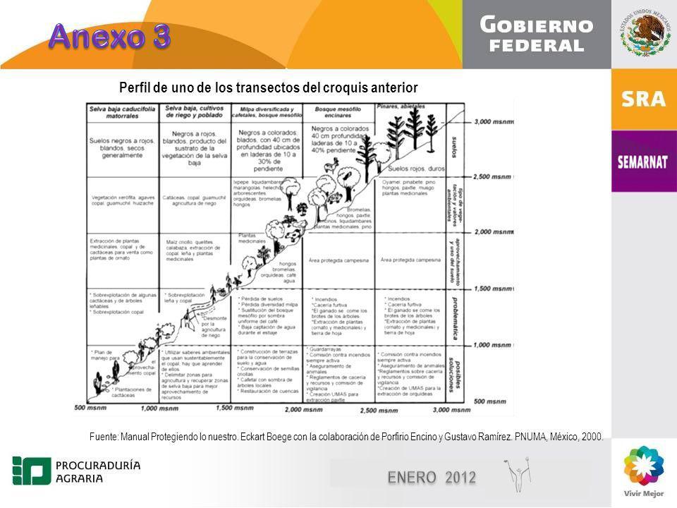Diciembre, 2010 11 Perfil de uno de los transectos del croquis anterior Fuente: Manual Protegiendo lo nuestro.