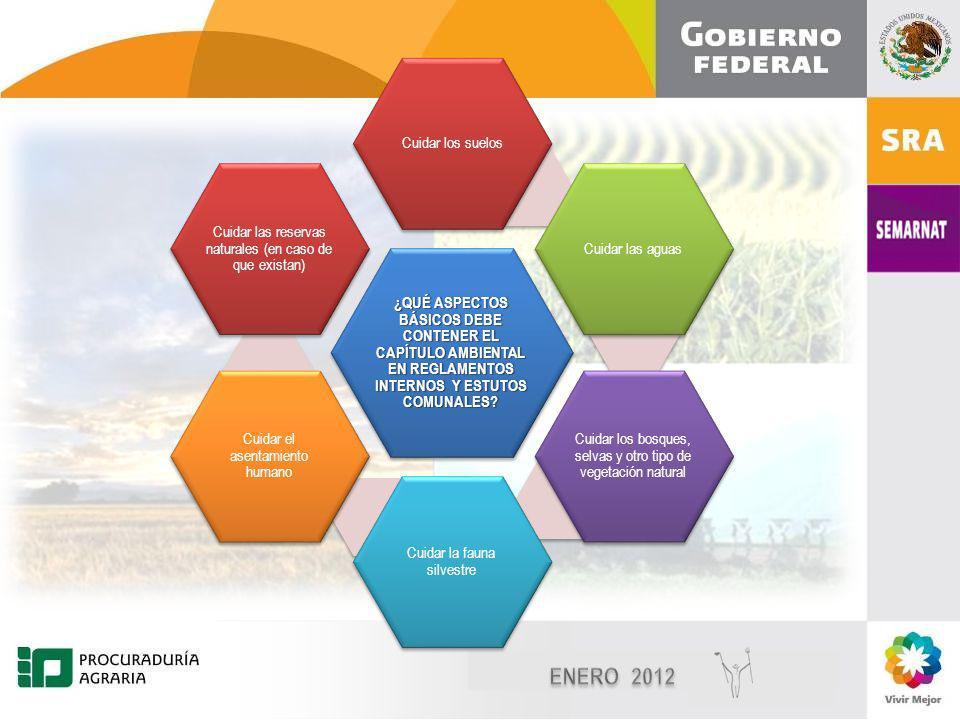 Diciembre, 2010 7 7 ¿QUÉ ASPECTOS BÁSICOS DEBE CONTENER EL CAPÍTULO AMBIENTAL EN REGLAMENTOS INTERNOS Y ESTUTOS COMUNALES.