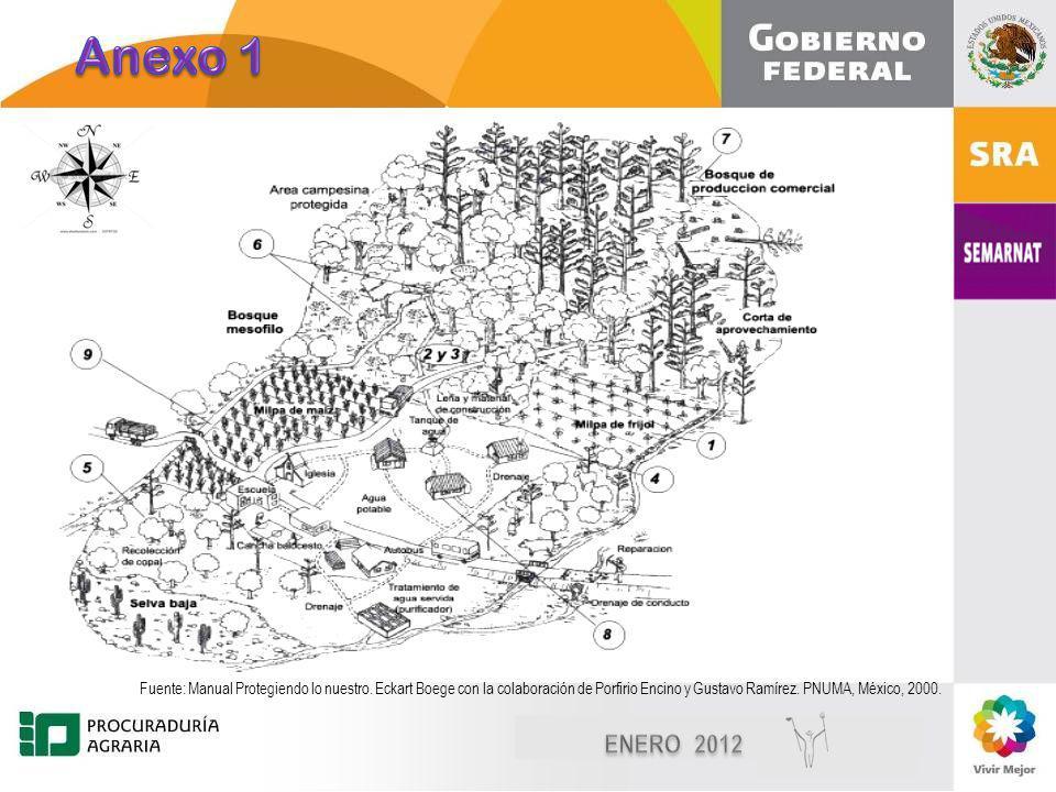 Diciembre, 2010 8 8 Fuente: Manual Protegiendo lo nuestro.