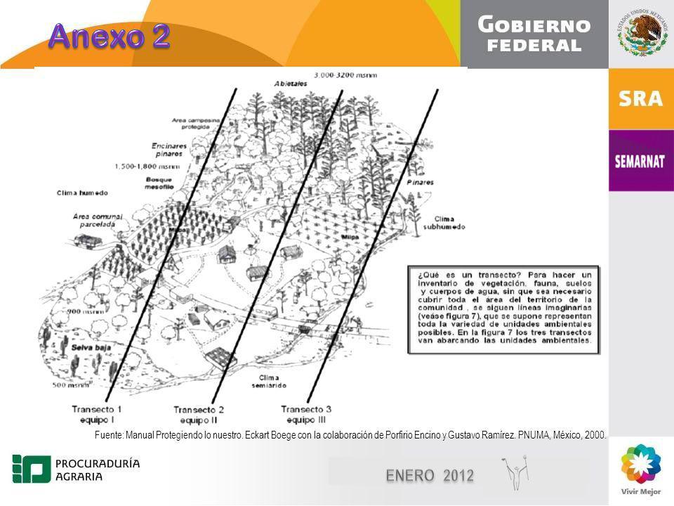 Diciembre, 2010 10 Imágenes de: Consultive Group on International Agricultural Research Trazo de transectos